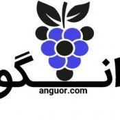 گل فروشی آنلاین انگور